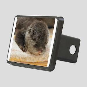 Sleeping Otter Rectangular Hitch Cover