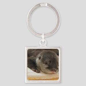 Sleeping Otter Square Keychain