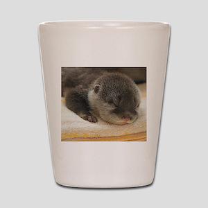 Sleeping Otter Shot Glass
