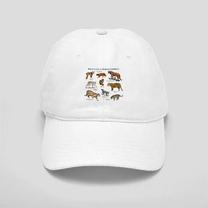 Wildcats of North America Cap 110b64104871