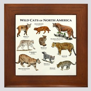 Wildcats of North America Framed Tile