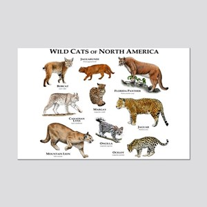 Wildcats of North America Mini Poster Print