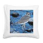 Killdeer (Single) Square Canvas Pillow