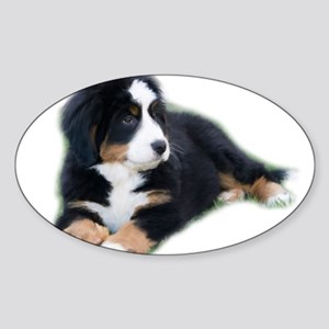 bernese-mountain-puppy_ Sticker (Oval)