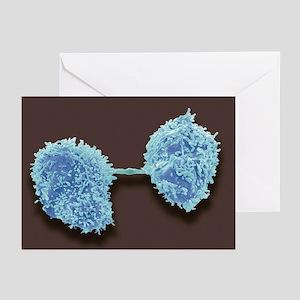 Dividing cancer cells, SEM - Greeting Cards (Pk of