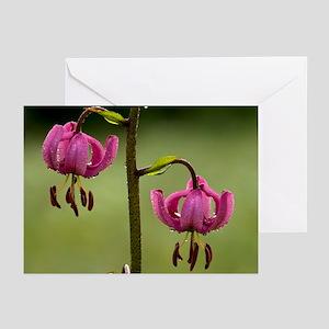 Martagon Lily (Lilium martagon) - Greeting Cards (