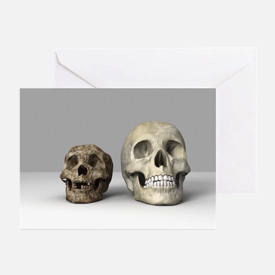 Homo floresiensis skull - Greeting Cards (Pk of 20
