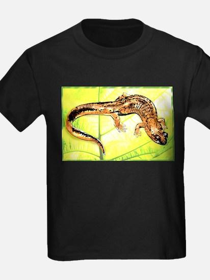 Black Mountain Salamander T