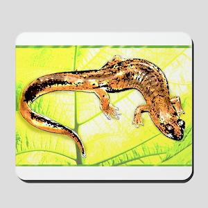 Black Mountain Salamander Mousepad
