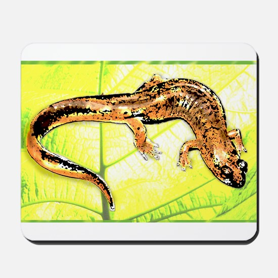 Black Mountain Salamander Mousepad