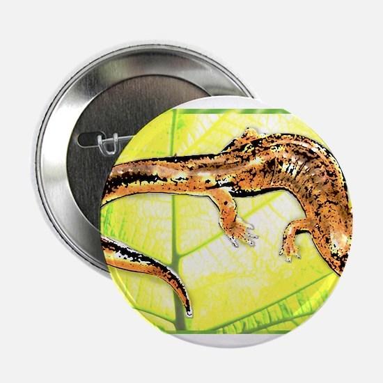 "Black Mountain Salamander 2.25"" Button"