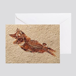 Fossilised fish - Greeting Card