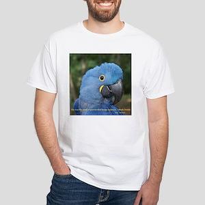 Hyacinth Macaw JM Csaky White T-Shirt