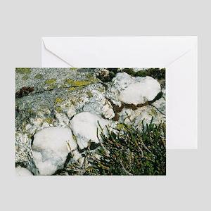 Quartzite rocks - Greeting Card