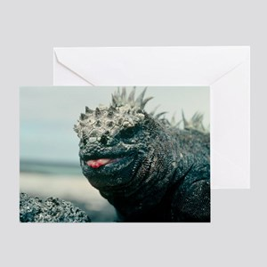 Marine iguana - Greeting Card