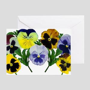 Pansy (Viola x wittrockiana) - Greeting Card