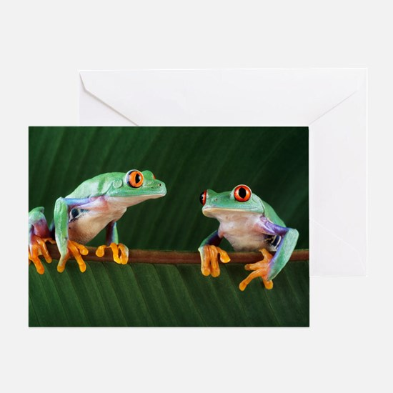Red-eyed tree frogs - Greeting Card