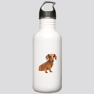Painted Red Doxie Smooth Hair Stainless Water Bott