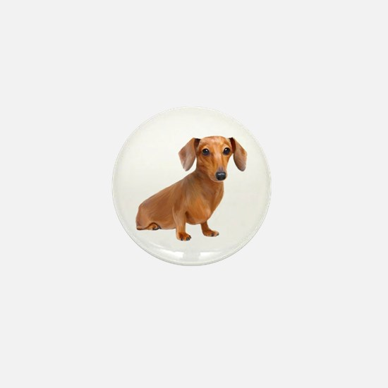 Painted Red Doxie Smooth Hair Mini Button