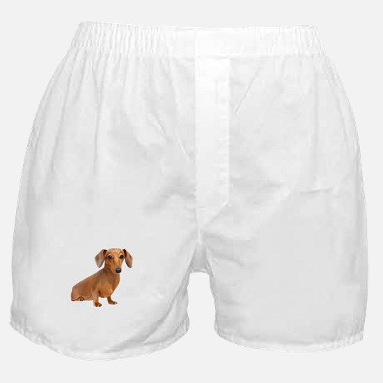 Painted Red Doxie Smooth Hair Boxer Shorts