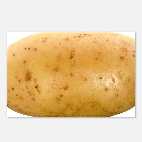 Potato - Postcards (Pk of 8)