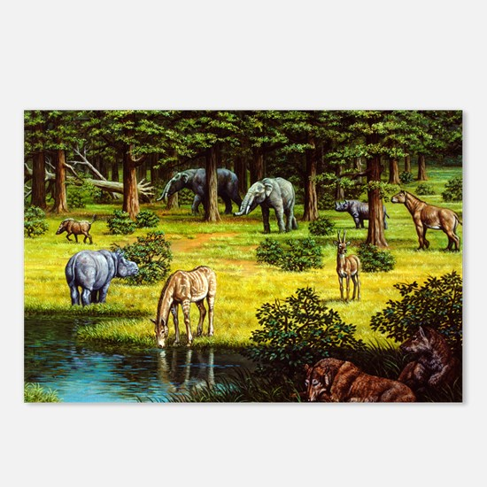 Prehistoric wildlife of the Miocene era - Postcard