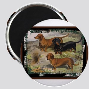 Antique Dachshund Doxie Magnet