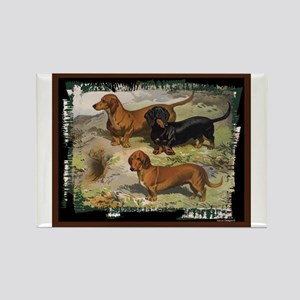 Antique Dachshund Doxie Rectangle Magnet