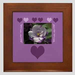 African Violet Framed Tile