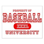 Baseball University Small Poster