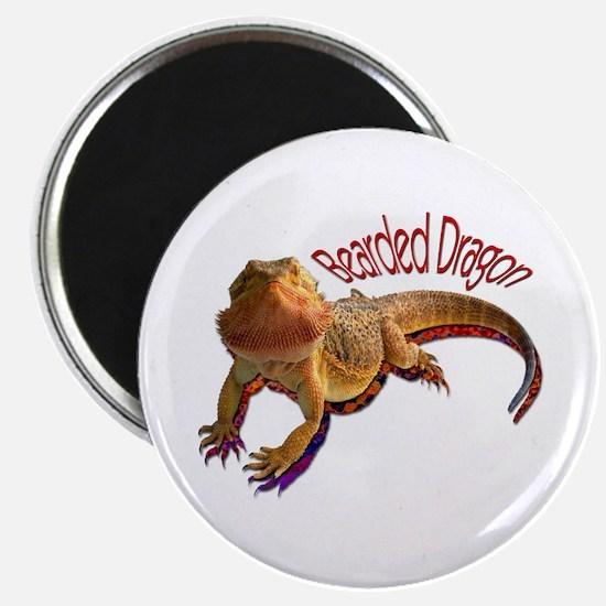 Bearded Dragon III Magnet