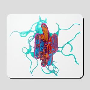 Legionella bacteria - Mousepad
