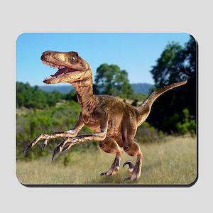 Deinonychus dinosaur - Mousepad