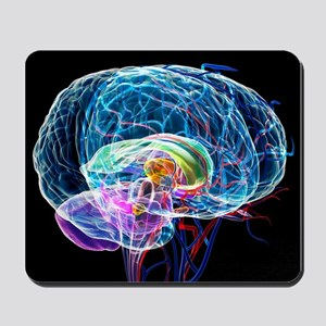 Brain anatomy, artwork - Mousepad