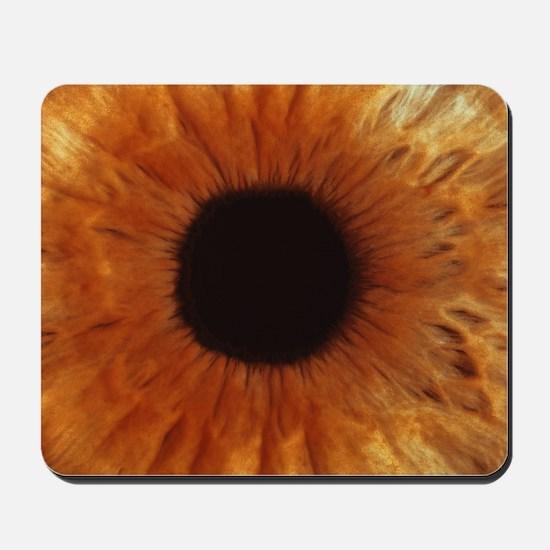 Human iris - Mousepad