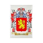 Aynauld Rectangle Magnet (100 pack)