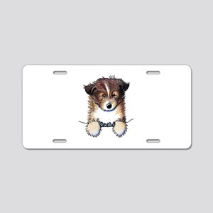 Pocket Sheltie Aluminum License Plate