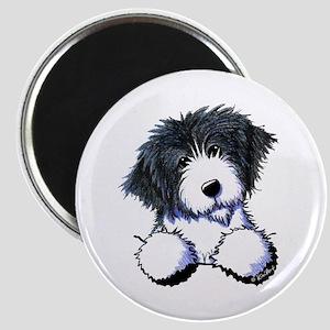 Pocket Bearded Collie Magnet