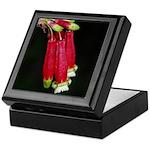 Flaming Firecracker Flowers Keepsake Box