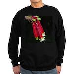 Flaming Firecracker Flowers Sweatshirt (dark)