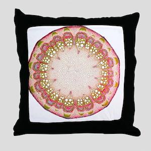 Clematis stem, light micrograph - Throw Pillow