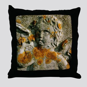 Macrophotograph of a lichen - Throw Pillow
