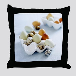Assortment of eggs - Throw Pillow