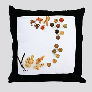 Assortment of spices - Throw Pillow