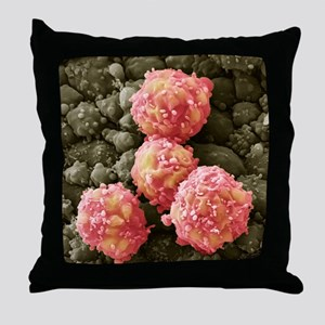Foetal blood stem cells, SEM - Throw Pillow