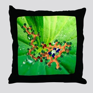 Chlorophyll molecule - Throw Pillow