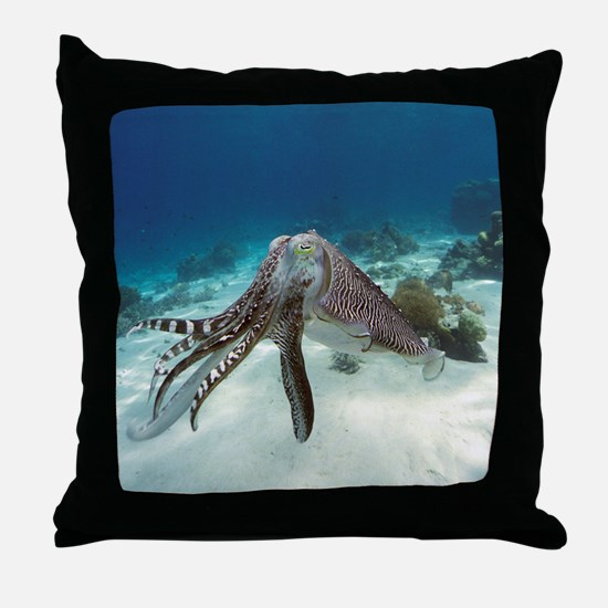 Broadclub cuttlefish - Throw Pillow