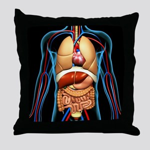 Human anatomy, artwork - Throw Pillow