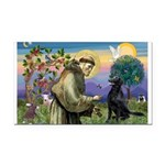 St. Fran/ Flat Coated Ret Rectangle Car Magnet