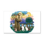 St.Francis (w) / 2 Shelties Rectangle Car Magnet